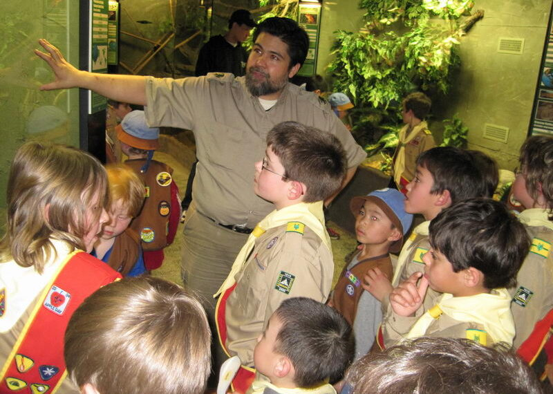 reptilia scouts with educator