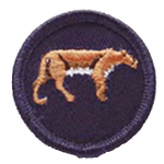 reptilia scoutsa and guides endangered animals badge