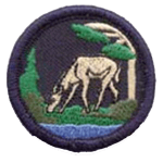 reptilia scouts and guides plants and animals badge