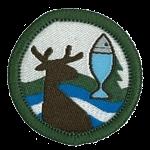 reptilia scouts badge