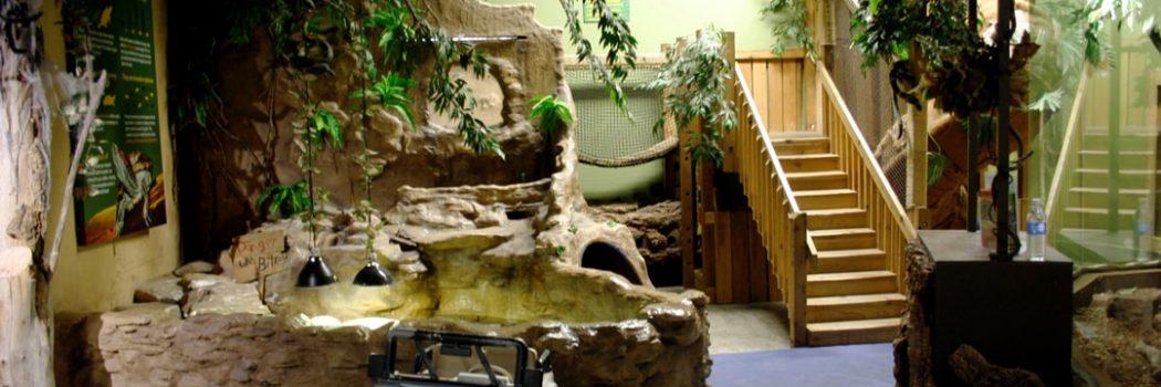 Reptilia Indoor Playground for Kids
