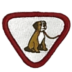 reptilia scouts pet badge