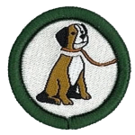reptilia scouts pet care badge