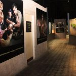 reptilia reptile zoo hallway