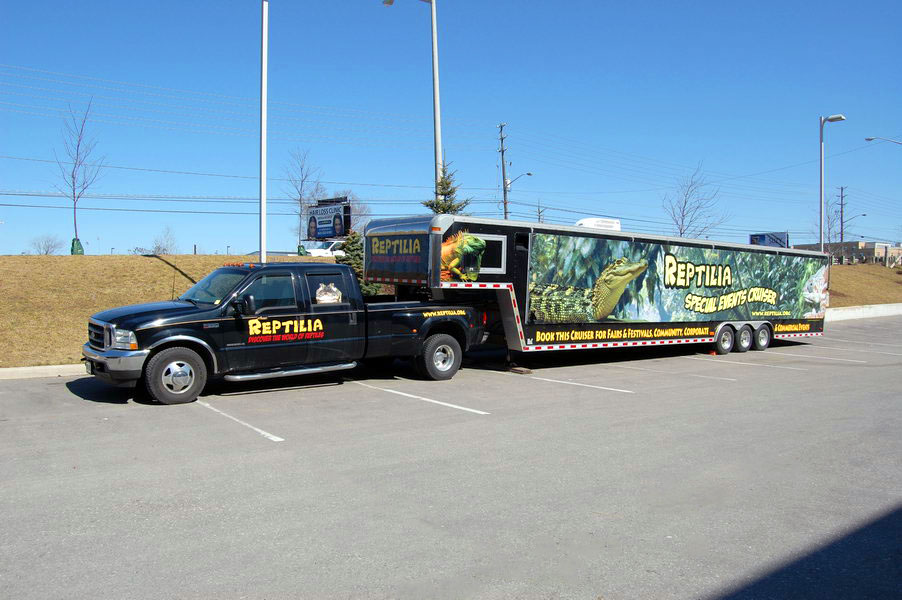reptilia reptile zoo event rental cruiser with 26 reptile displays