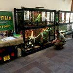 reptilia mobile zoo display with zookeeper crouched in front
