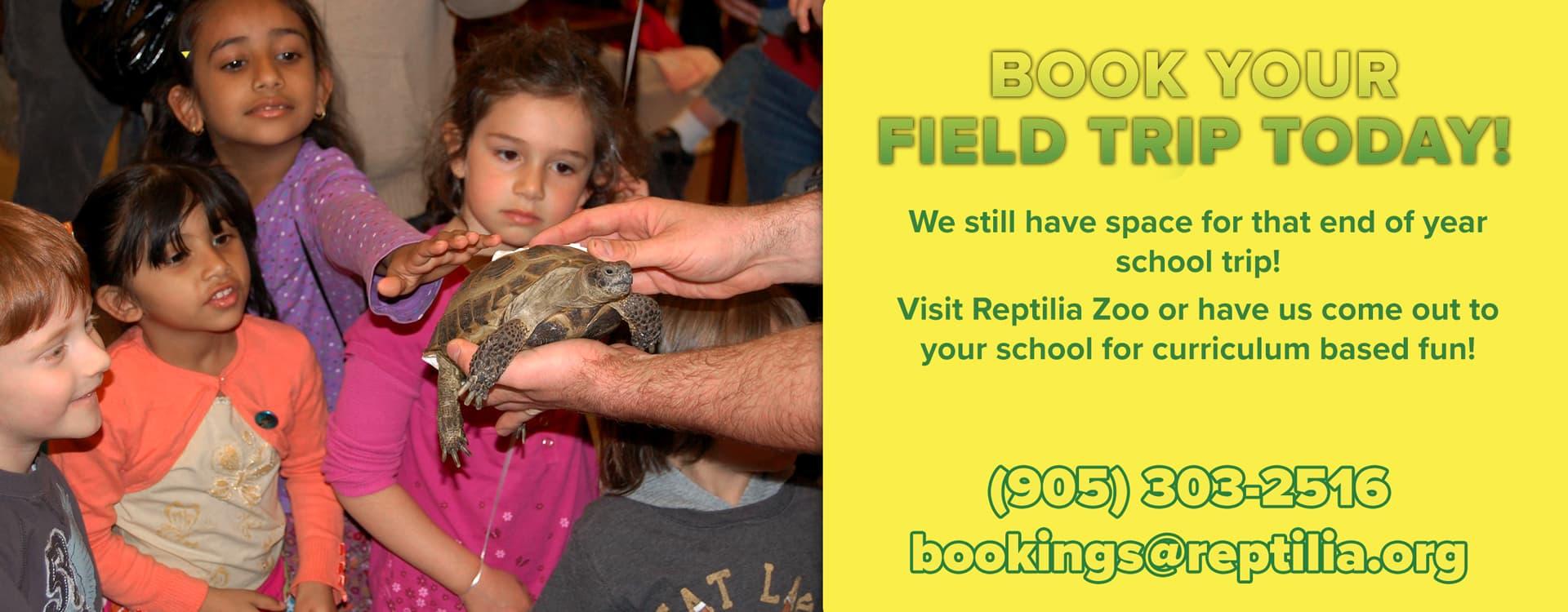 Reptilia School Field Trips Ideas