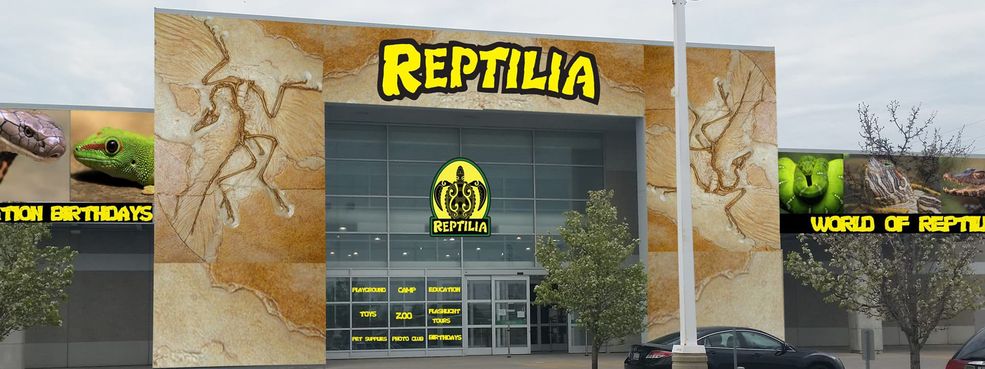 reptilia whitby