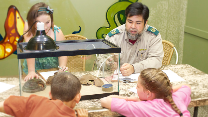 RECF Gecko Habitarium Program with kids