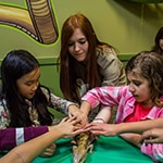 Reptilia Birthday Party Guests touching a Blue Tongued Skink