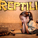 Reptilia Camp Kid Sitting with Turtle